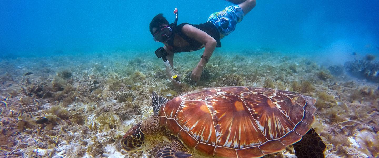 Snorkeling Spots in Guam