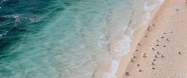 Top Guam Beaches