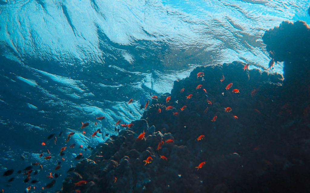 Diving in Guam